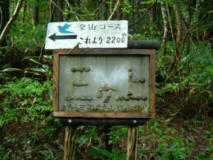 20070507180026.jpg