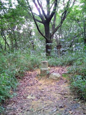 misaoyama 004