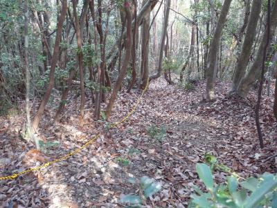 090217takatakiyama 015