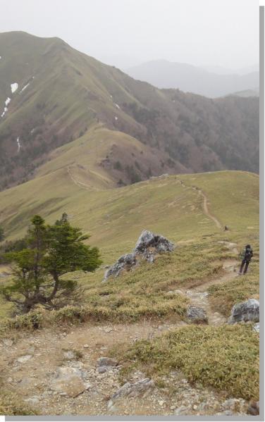 sikokusannkou 020-1