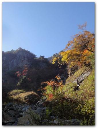 2011-10-15-16saijou 060_R